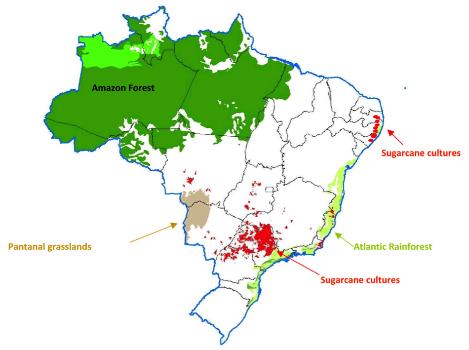 Sugarcane plantations in Brazil (2008). Mills and refineries produce either sugar or ethanol.